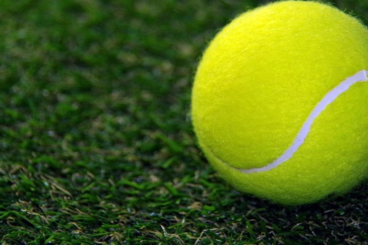 コラム:ミュージカル『テニスの王子様』出演者名鑑 青学(せいがく)編――「テニミュ出た人あるある」とともに振り返る