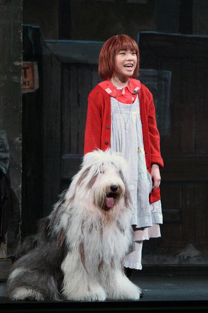 ミュージカル『アニー』2016_公開ゲネプロ