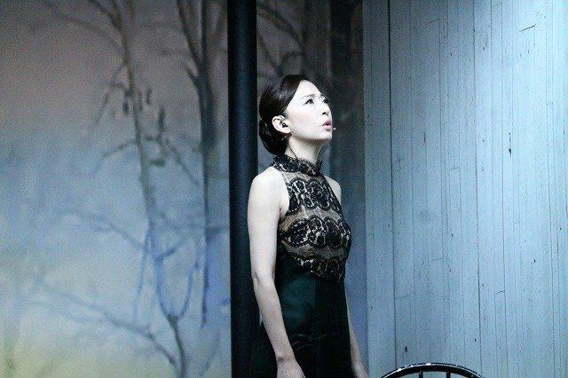松雪泰子らが女性小説家の心の闇を見つめる!舞台『この熱き私の激情』開幕