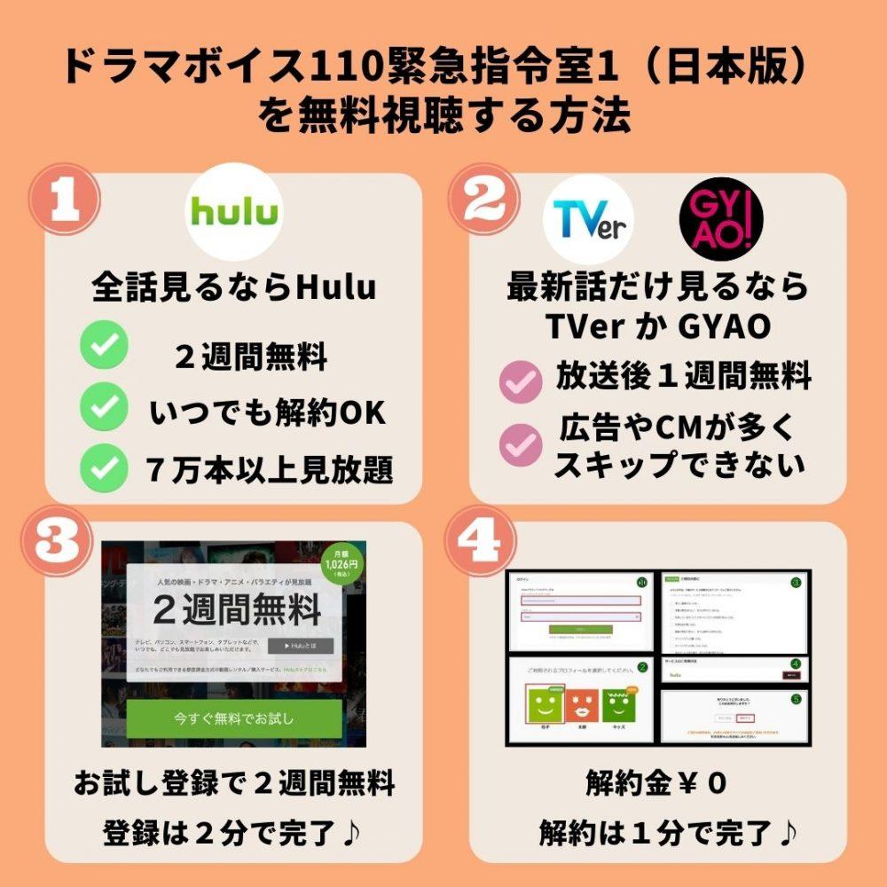 ドラマボイス110緊急指令室1(日本版)の動画を無料視聴