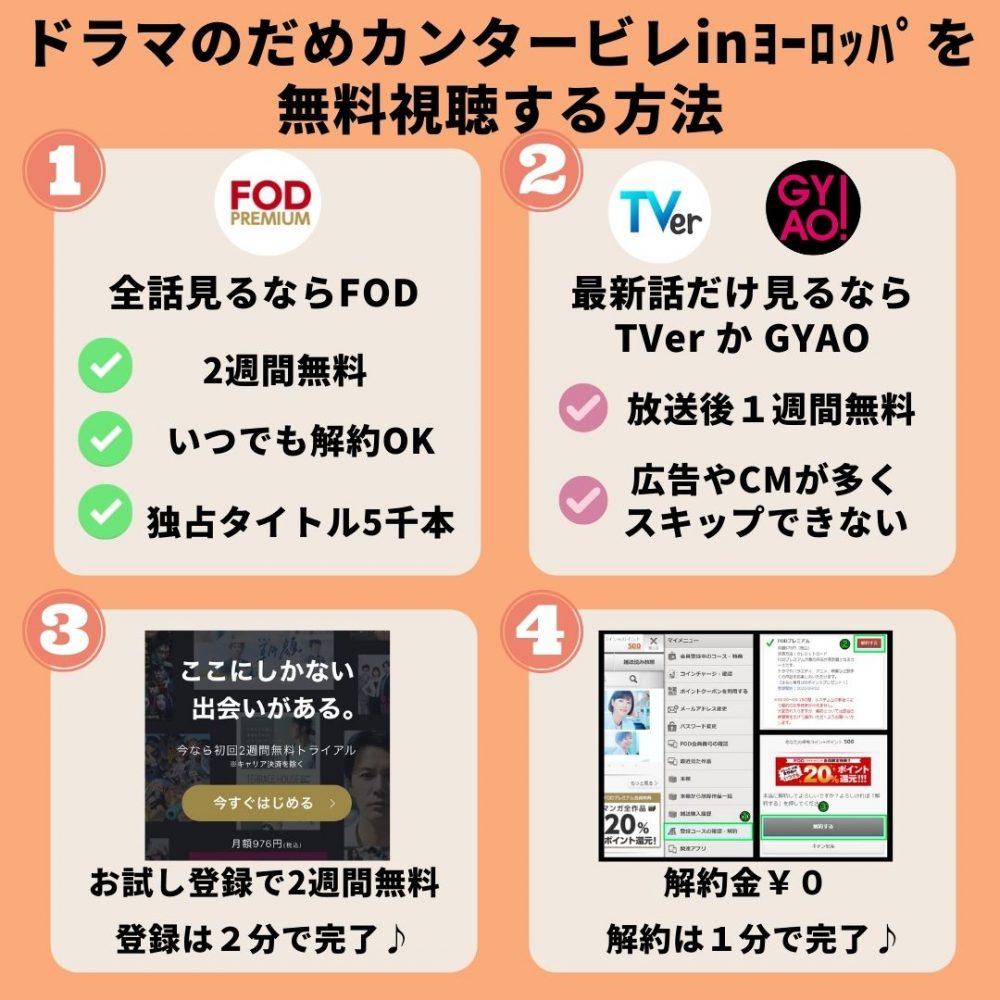 ドラマのだめカンタービレ 新春スペシャル in ヨーロッパの動画を無料視聴