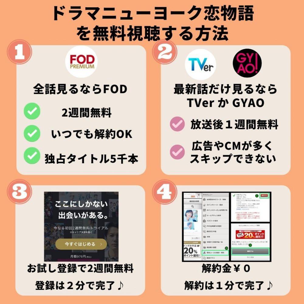 ドラマニューヨーク恋物語の動画を無料視聴