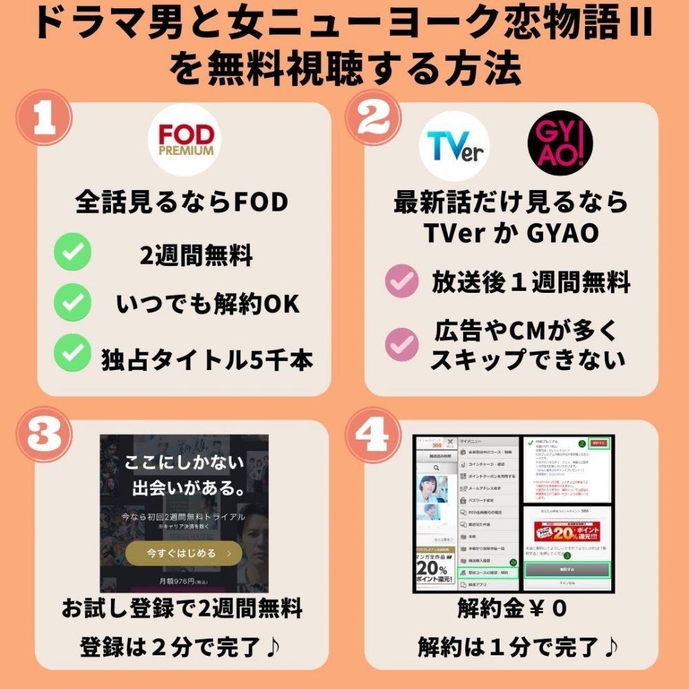 ドラマ男と女ニューヨーク恋物語Ⅱ-を無料視聴