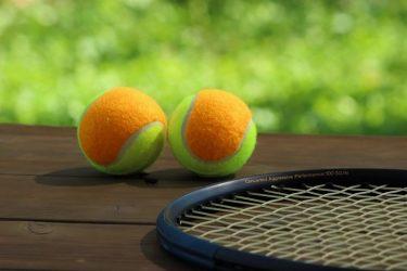 ミュージカル『テニスの王子様』出演者名鑑【聖ルドルフ編】――「テニミュ出た人あるある」とともに振り返る