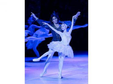 【中止】松山バレエ団 新『白鳥の湖』全幕