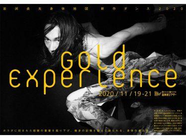 [岩渕貞太 身体地図] 新作ダンス2020 Gold Experience