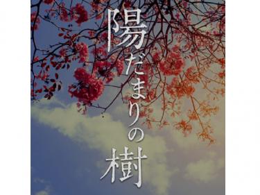 舞台『陽だまりの樹』2021