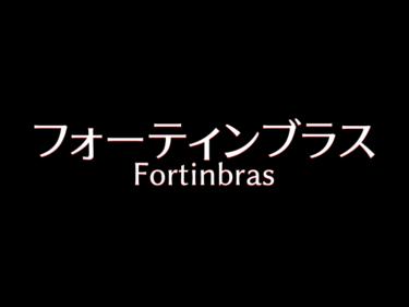 『フォーティンブラス』